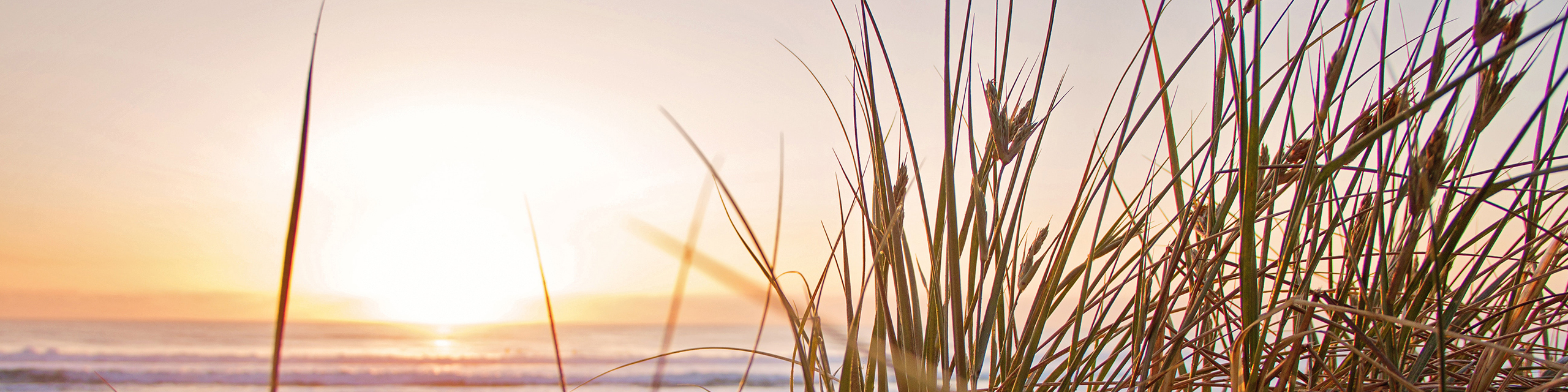 Picture of warm summer sunset over a lake with grasses in the foreground.